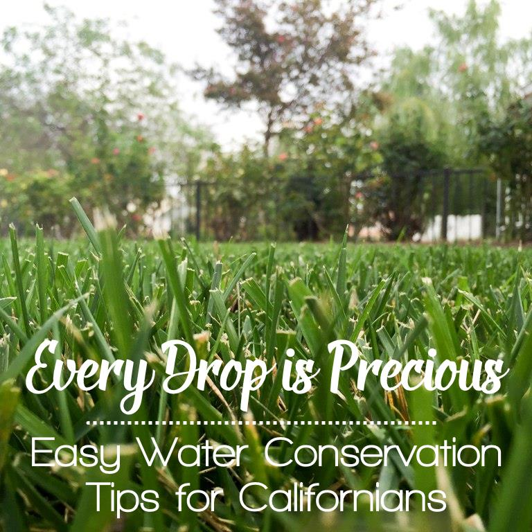 Every Drop is Precious - Easy Water Conservation Tips for Californians